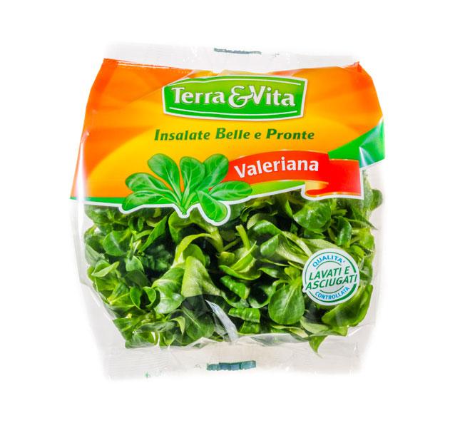 Terra vita insalate belle e pronte for Songino valeriana